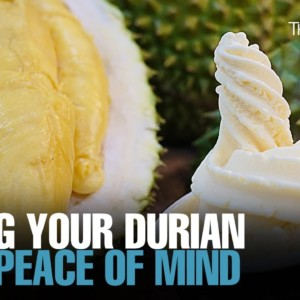 NEWS: Eating durian with a clean conscience